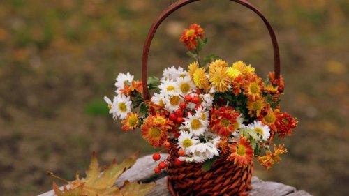 Праздники 7 сентября 2021: история, традиции, именины