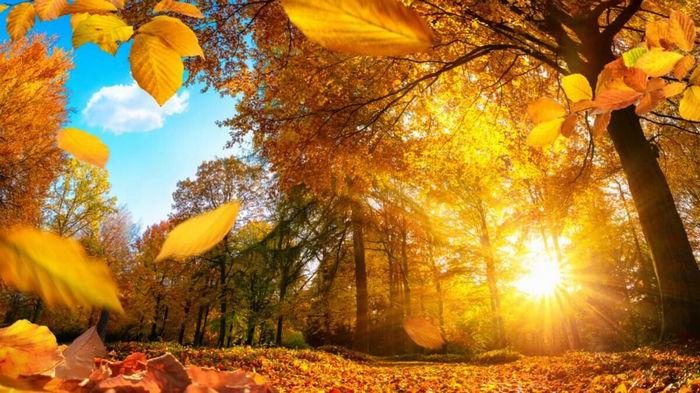 Праздники 14 сентября 2021: интересные факты, традиции, именины