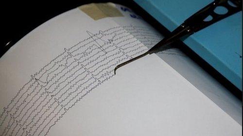 В Японии и Мексике зафиксировали сильные землетрясения (видео)