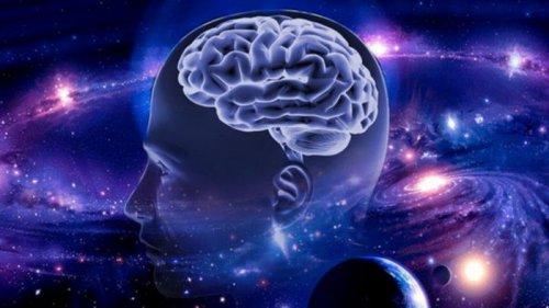 5 советов нейробиолога: Чем заменить таблетки для улучшения работы моз...
