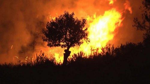 В Испании продолжают бушевать масштабные лесные пожары (видео)