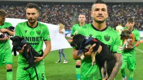 Футболисты румынского клуба вышли на матч с собаками из приюта