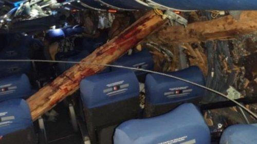 В Аргентине при ДТП автобус прошило бревнами, 12 погибших (фото)