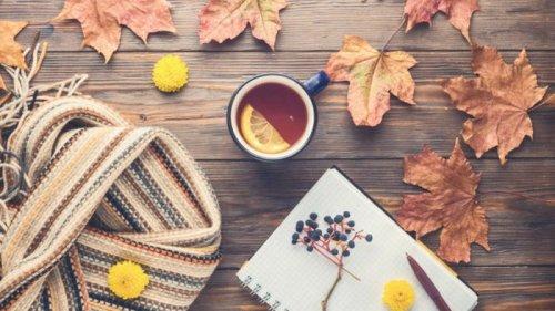 Праздники 8 октября 2021: события, традиции, приметы