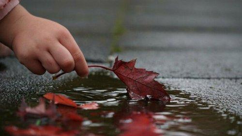 В Украину идут дожди и похолодание