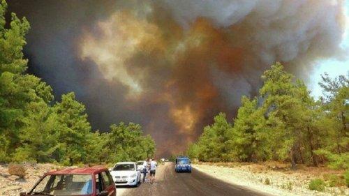 В Турции снова горит лес