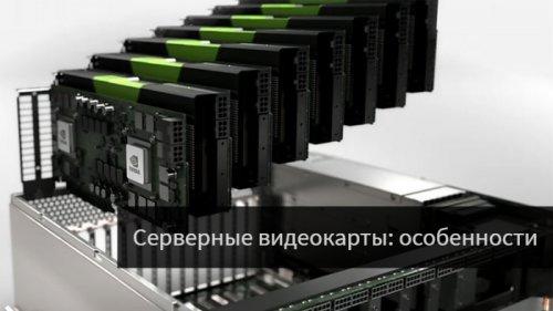 Серверные видеокарты: особенности и правила подбора