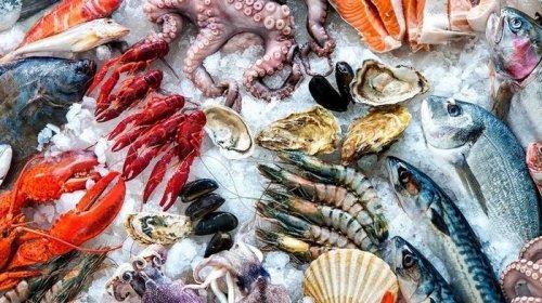 Чем полезны морепродукты и где найти лучшие?