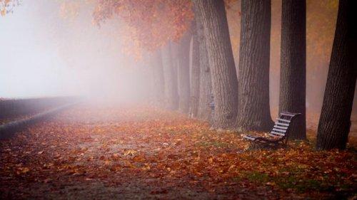 Праздники 20 октября 2021: факты, традиции, приметы