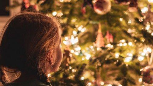 Без снега: синоптики дали прогноз на новогодние праздники