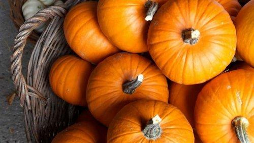 Праздники 27 октября 2021: интересные факты, традиции, именины